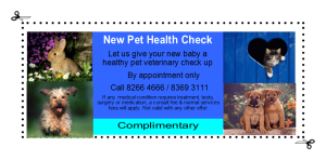 New Pet Check Voucher