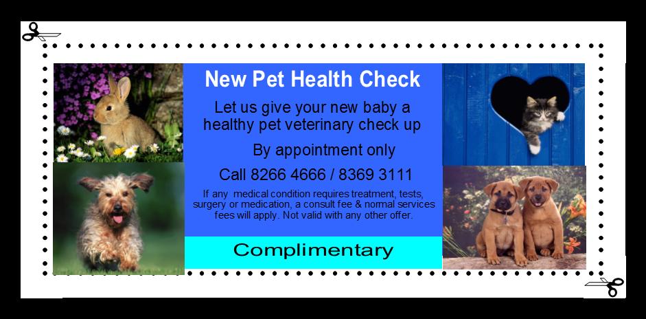 Free puppy and kitten checks   Pet Universe