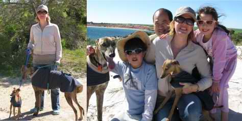 leegryhounds