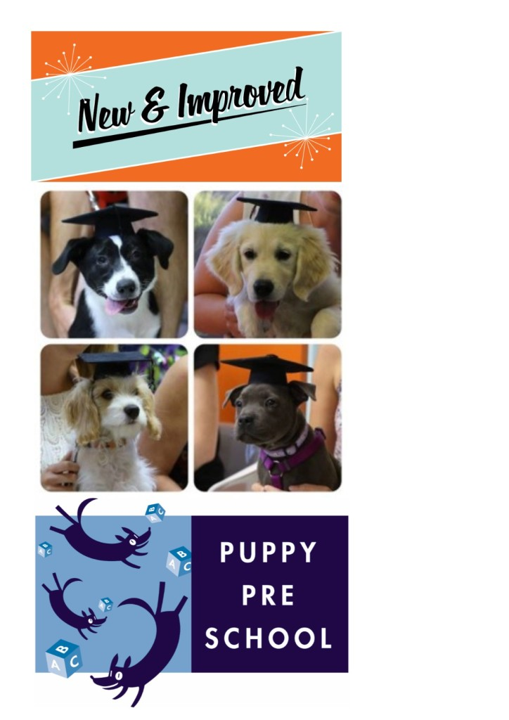New Improved Puppy Preschool visual