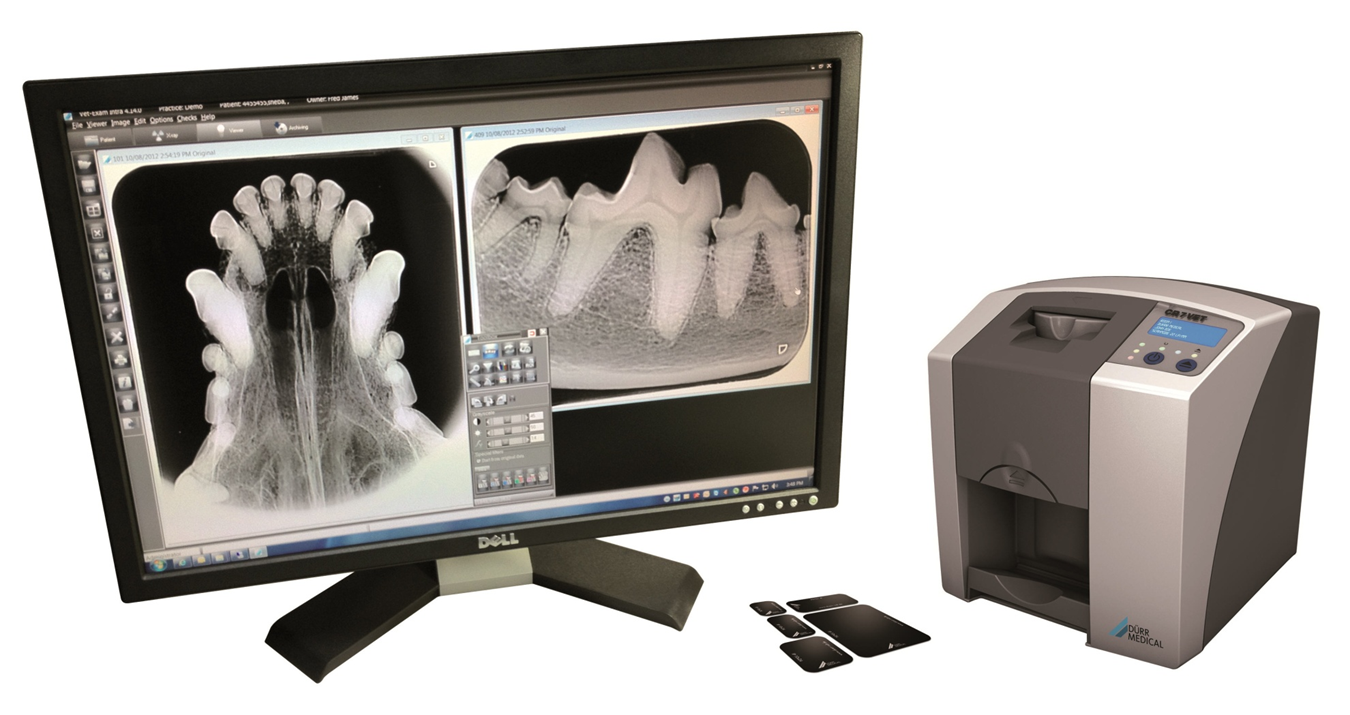 Dental x-ray screen